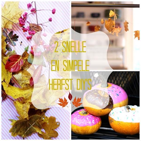 2-snelle-en-simpele-herfst-diy